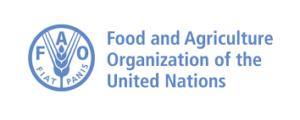 FAO Representative in Uganda